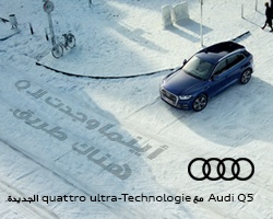 The  Audi Q5