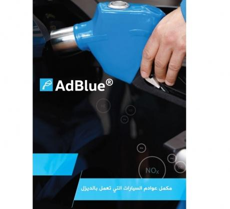 Ad. Blue Guide